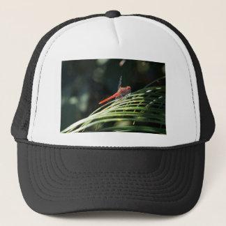DRAGONFLY RED RURAL QUEENSLAND AUSTRALIA TRUCKER HAT