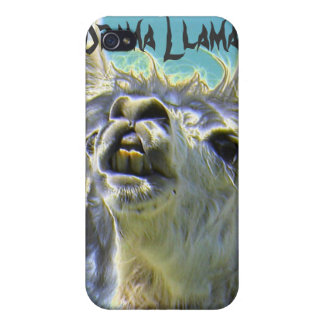 Drama Llama, Drama Llama! Cover For iPhone 4