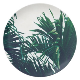 Dreaming of Costa Rica Plate