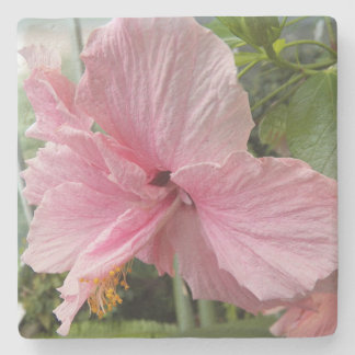 Dreamy Pink Hibiscus Floral Stone Coaster