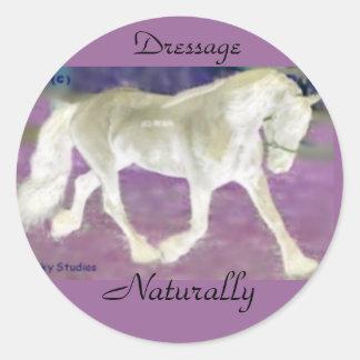 Dressage Horse Stickers