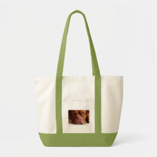 Droopy Dogue Hand Bag