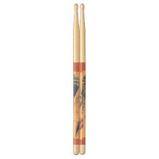 Drum stick drum sticks