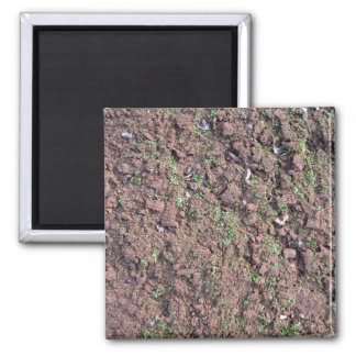 Dry Soil and Grass Blooming Fridge Magnet