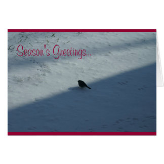 DSC01091, Season's Greetings... Card