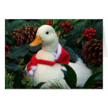 Duck Holiday Card