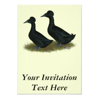 Ducks:  Black Crested 13 Cm X 18 Cm Invitation Card