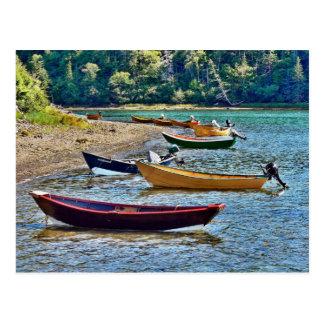 Dulse Seaweed Boats, New Brunswick, Grand Manan Is Postcard