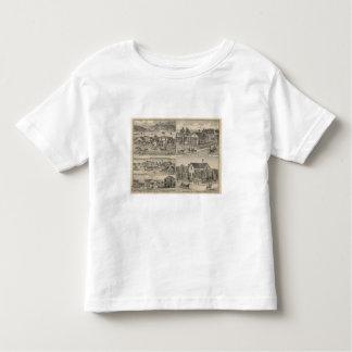Dunnigan, Winters, Madison farm Toddler T-Shirt