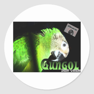Dusky Conure Gear Classic Round Sticker