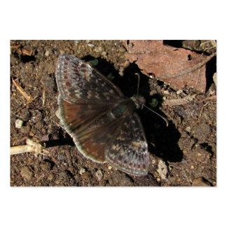 Duskywing Butterfly ~ ATC Business Card Template