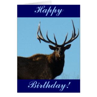 E0027 Bull Elk Sky Lined Card