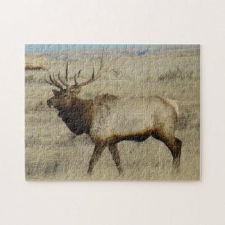 E0055 Bull Elk Jigsaw Puzzle