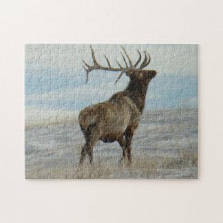 E0058 Bull Elk Lucky 13 Bull Jigsaw Puzzle