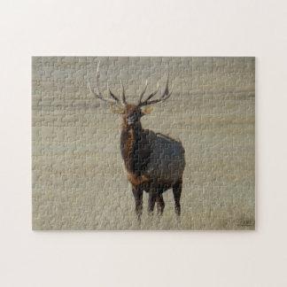 E0059 Bull Elk Jigsaw Puzzle