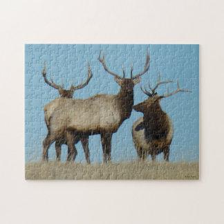 E0060 Bull Elk Sky Lined Jigsaw Puzzle
