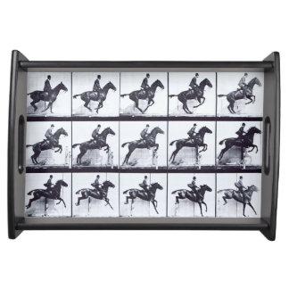 EADWEARD MUYBRIDGE: Horse Daisy Jumping-Small Tray