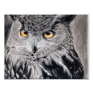 Eagle Owl by gafi_Artstudio Photo Print