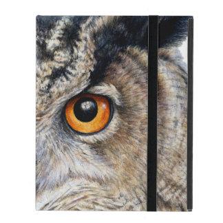 Eagle Owl face fine art portrait ipad powis case
