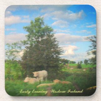Early Evening  West - Ireland Coaster