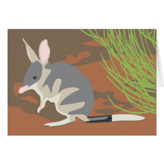 Easter bilby card with envelopes