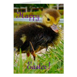Easter Chick II Greeting Card