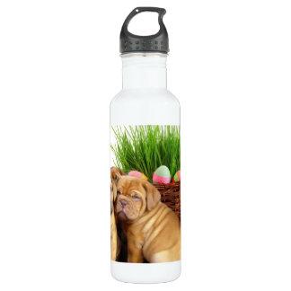 Easter Dogue de Bordeaux pups 710 Ml Water Bottle