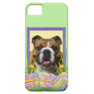 Easter Egg Cookies - Bulldog iPhone 5 Covers