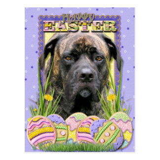 Easter Egg Cookies - Mastiff Postcard