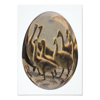 easter egg goslings street crossing 13 cm x 18 cm invitation card