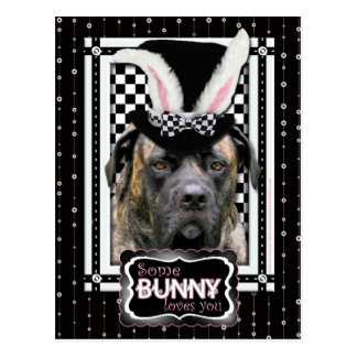Easter - Some Bunny Loves You - Mastiff Postcard