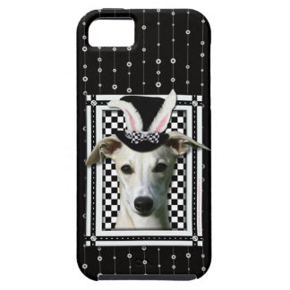 Easter - Some Bunny Loves You - Whippet iPhone 5 Case