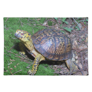 Eastern Box Turtle Placemat