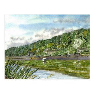 Ebb Tide Postcard
