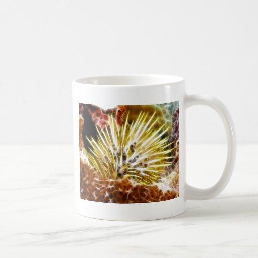 Echinometra Mathaei Sea Urchin Coffee Mug