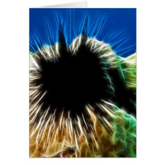 Echinothrix Calamaris Sea Urchin Cards