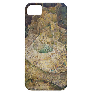 Edad De Oro iPhone 5 Cases