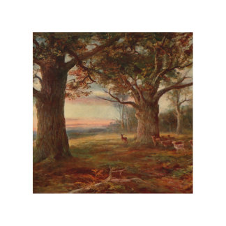 Edge of Sherwood Forest Wood Print