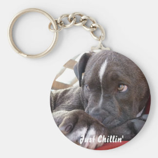Editable Baby Pitbull Puppy Key Ring