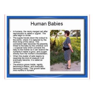 Education, Science, Life,Human babies Postcards
