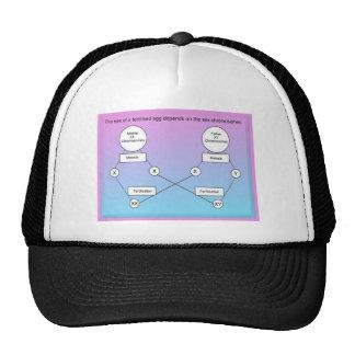 Education,Science, life science, Chromosomes Trucker Hats