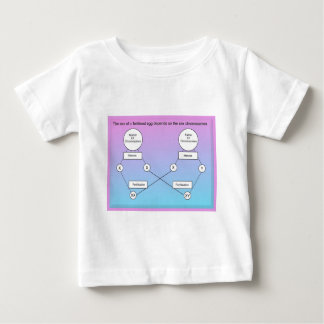 Education,Science, life science, Chromosomes T Shirts