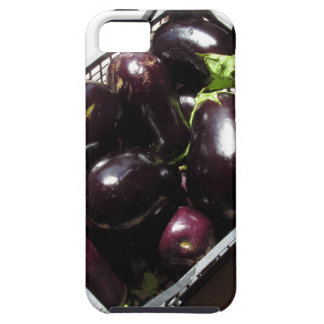 Eggplants in box on white background iPhone 5 case