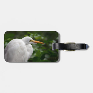 Egret looking right against green c bird luggage tag