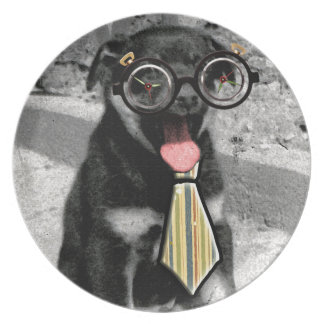 Einstein the black puppy with glasses plate