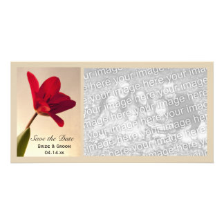 Elegant Red Tulip Wedding Save the Date Photo Card