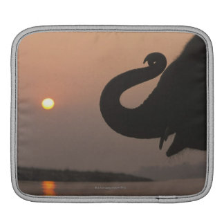 Elephant, Chitwan National Park, Nepal iPad Sleeve