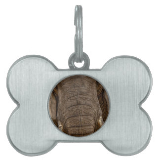 Elephant Dog plaque-Plate for dogs elephants Pet ID Tag
