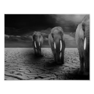 Elephants in the Desert Poster