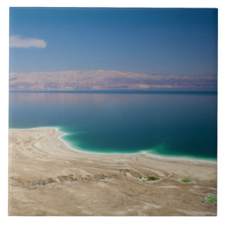 Elevated view of the Dead Sea Tile